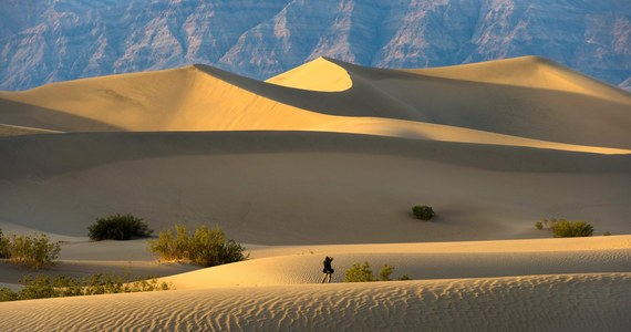 Rekordowe temperatury w kalifornijskiej Dolinie Śmierci. Jak wyliczają służby, średnia temperatura w lipcu wyniosła tam 42,2 stopnie Celsjusza. Tym samym Dolina Śmierci pobiła własny zeszłoroczny rekord średniej temperatury, który wynosił 41,6 stopni.