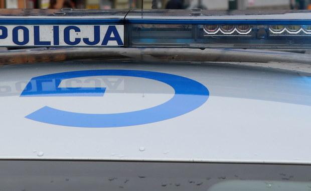Wypadkiem zakończyła się kradzież samochodu w Gdańsku. Policjanci zatrzymali 35-letniego mieszkańca miasta, który w wyniku zderzenia został ranny.