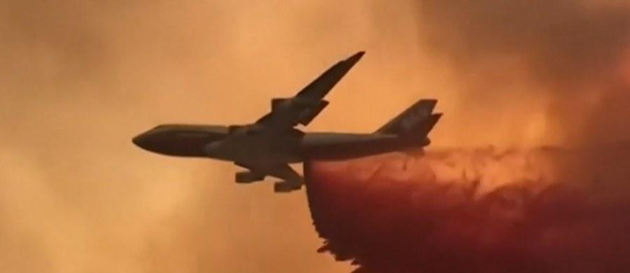 Od ponad tygodnia w miejscowości Clearlake w Kaliforni szaleje pożar, w wyniku którego zginęło już sześć osób, a ponad 50 tysięcy zostało ewakuowanych.
