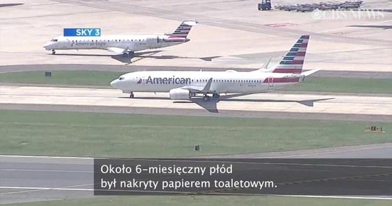 W Nowym Jorku ekipa sprzątająca w toalecie samolotu znalazła nie żywy płód.