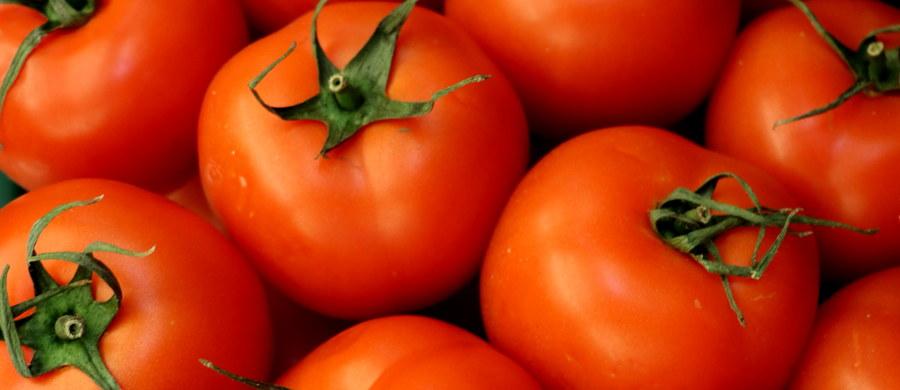 """W krojonych pomidorach sprzedawanych pod nazwą """"Freshona"""" i """"Italiamo"""" mogą znajdować się plastikowe elementy grożące poranieniem podczas spożycia. Dlatego producent wycofał je z rynku - poinformował w środę Główny Inspektorat Sanitarny."""