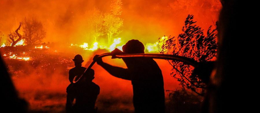Wysokie słupy gęstego, czarnego dymu są widoczne nad niektórymi popularnymi plażami w południowej części Portugalii. Przyczyną są pożary w rejonie miejscowości Monchique, położonej w górzystym regionie Algarve, które trwają od siedmiu dni.