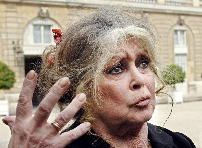 """Brigitte Bardot, francuska aktorka, od lat walcząca o prawa zwierząt, nazwała """"tchórzem"""" ministra ds. transformacji ekologicznej i solidarnościowej Nicolasa Hulota i wezwała do jego dymisji. Powodem niezadowolenia Brigitte Bardot było stanowisko ministra w sprawie polowań."""