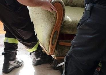 Pod swoim łóżkiem znalazła węża. Musiała interweniować policja