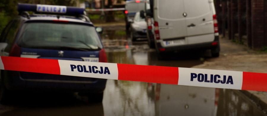 Makabryczne znalezisko w Wołominie pod Warszawą. W poniedziałek ok. godziny 19:00 podczas spaceru z psem nastolatka znalazła ludzką czaszkę zawiniętą w foliowy worek.