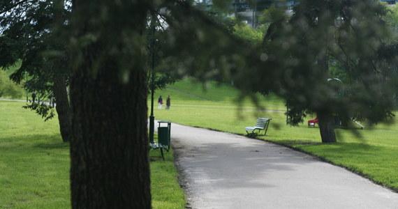 Jest policyjne śledztwo po poniedziałkowym wypadku w jednym z warszawskich parków. Drzewo przewróciło się tam na matkę z niemowlęciem.