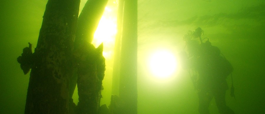 To jedna z najbardziej tajemniczych historii II wojny światowej. Podszczecińskie jezioro Miedwie, piąte co do wielkości jezioro w Polsce, może kryć w sobie niemieckie torpedy. Na ich poszukiwania ruszają specjalizujący się w podwodnych badaniach muzealnicy.
