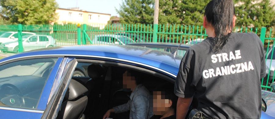 Dziesięcioro nielegalnych imigrantów z Wietnamu zatrzymała podlaska Straż Graniczna w czasie kontroli osobowego samochodu, którym według przepisów może podróżować 5 osób. Kierowca próbował uciekać przed kontrolą, auto wpadło do rowu, ale nikomu nic się nie stało.