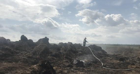 Smród spalenizny dręczy od niedzieli mieszkańców Kłodnicy Górnej w gminie Borzechów na Lubelszczyźnie. Skład zbelowanej słomy pali się codziennie.