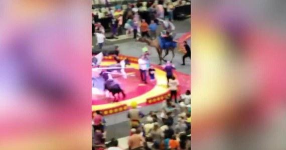 Co najmniej siedem osób zostało stratowanych przez wielbłąda w cyrku w Pittsburghu w stanie Pensylwania. Zwierzę zaczęło uciekać z wybiegu wewnątrz namiotu. Na wielbłądzie siedziała kobieta. Na ratunek rzucili się inni opiekunowie zwierzęcia. Wśród poszkodowanych jest sześcioro dzieci oraz osoba dorosła. Jedno z dzieci ma złamaną rękę, pozostali odnieśli lekkie obrażenia.