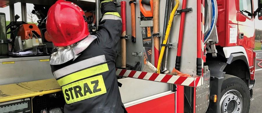 Dziewięć osób zostało rannych w zderzeniu busa i samochodu osobowego w Bratoszewicach w powiecie zgierskim w województwie łódzkim. Droga krajowa numer 14 między Głownem a Strykowem była zablokowana przez kilka godzin.