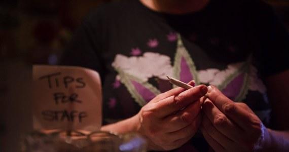 """Pewna firma z Toronto w Kanadzie szuka sześciu ochotników, którzy przetestowaliby jej produkty zawierające marihuanę. Za godzinę """"pracy"""" oferuje 39 dolarów. I teraz ma problem, kogo wybrać. Swoje aplikacje złożyło ponad 500 osób."""