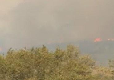 Kolejne pożary w Grecji. Ewakuacja polskich turystów