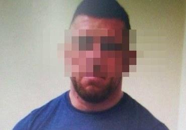 """""""Misiek"""" we włoskim areszcie. Do Polski trafi prawdopodobnie w przyszłym tygodniu"""
