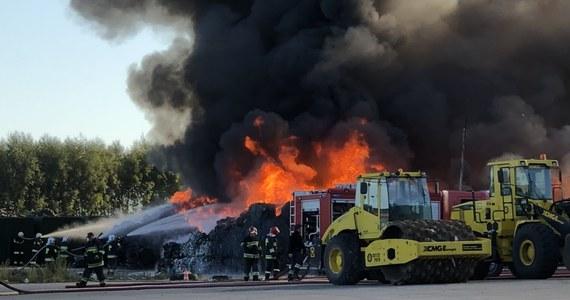 Pożar składowiska odpadów komunalnych wybuchł w sobotę w Nowym Świecie pod Sulechowem w Lubuskiem. Jak poinformowali nas strażacy, zapaliły się plastiki i opony, a w ogniu stanęło około 250 metrów kwadratowych hałdy śmieci, która miejscami ma nawet 5 metrów wysokości. Do akcji ruszyło kilkudziesięciu strażaków zawodowych i ochotników. Na szczęście nikomu nic się nie stało, nie było zagrożenia dla budynków i pobliskiego lasu. Film i zdjęcie pożaru dostaliśmy od Słuchaczy na Gorącą Linię RMF FM!