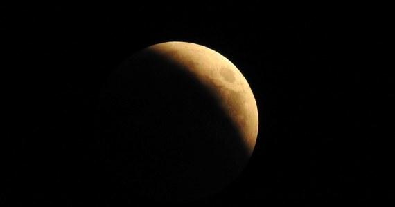 """Zaćmienie Słońca, które w ubiegłym roku można było obserwować w Stanach Zjednoczonych od zachodniego po wschodnie wybrzeże, dało okazję do niezwykłego eksperymentu. Jego wyniki pokazały, że w czasie tego rzadkiego i niezwykłego zjawiska nie tylko ludzie odrywają się od codziennych zajęć, pszczoły też. Okazało się, że w chwili całkowitego zaćmienia nie latają i w związku z tym nie bzykają. Piszą o tym na łamach czasopisma """"Annals of the Entomological Society of America"""" naukowcy University of Missouri, którzy zorganizowali obserwacje z udziałem setek badaczy-amatorów, w tym uczniów szkół podstawowych. W 16 miejscach na trasie całkowitego zaćmienia ustawiono specjalne stacje monitoringu akustycznego. Efekt był wszędzie taki sam. Cisza."""