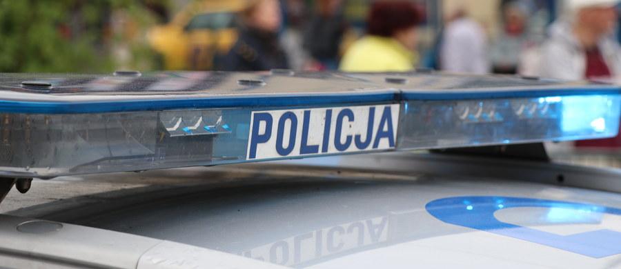 Tragiczny wypadek na drodze krajowej nr 5 na Dolnym Śląsku. W okolicach Lubawki samochód osobowy uderzył w drzewo.