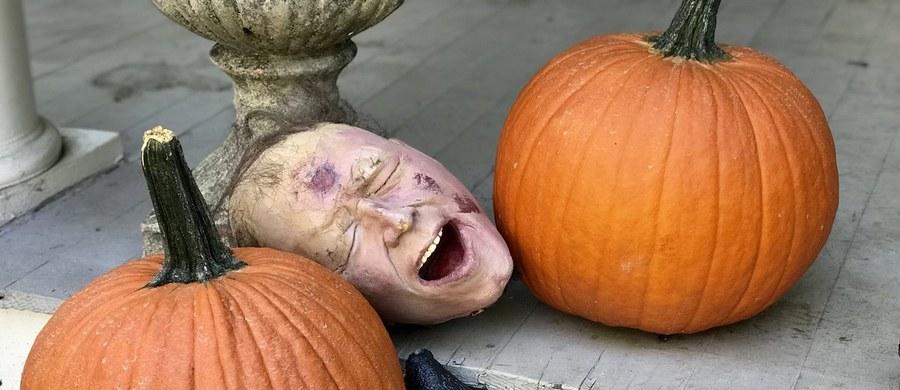 W Stanach Zjednoczonych wielkie przygotowania do wieczornych zabaw. Już jutro Halloween - jeden z bardziej komercyjnych wieczorów w roku za Oceanem. Trudno znaleźć dom, przed którym nie ma szkieletu, imitacji płyty nagrobnej czy choćby dyni.