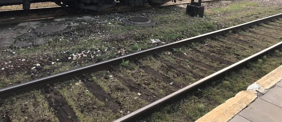 W Brwinowie w woj. mazowieckim pod pociąg wpadł 38-letni mężczyzna.