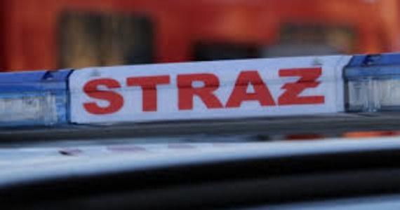 Opanowano pożar w zakładzie produkcji paliwa alternatywnego w Łabiszynie w powiecie żnińskim. Z ogniem walczyło 12 zastępów straży pożarnej.