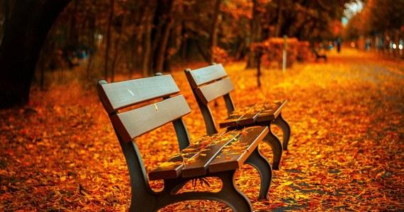 W długi, listopadowy weekend możemy liczyć na sporo chwil ze słońcem. Termometry pokażą miejscami nawet 15 stopni Celsjusza.