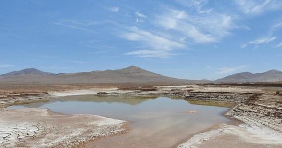 """Warunki korzystne dla powstania życia kojarzymy zwykle z obecnością ciekłej wody. Okazuje się jednak, że nawet na Ziemi są wyjątkowo suche miejsca, gdzie woda przynosi nie życie, ale śmierć. Międzynarodowa grupa naukowców, pod kierunkiem badaczy z hiszpańskiego Center for Astrobiology opisuje taki przykład na łamach czasopisma """"Scientific Reports"""". Niedawne deszcze nad wyjątkowo suchymi obszarami pustyni Atacama w Chile, przyniosły prawdziwą katastrofę dla żyjących tam dotąd w suszy i spokoju mikroorganizmów. Deszcz nie padał tam wcześniej od 500 lat, jego pojawienie się nie sprawiło, że zakwitły tam kwiaty. Wręcz przeciwnie."""