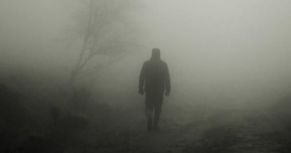 Prokuratura poinformowała, że znaleziono narzędzie, którym zadano śmiertelny cios 14-letniemu chłopcu w Gogolewa. To rodzaj drewnianej pałki. Podejrzany o zabójstwo dziecka mężczyzna sam wskazał miejsce, gdzie ją wyrzucił.