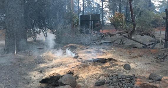 Szeryf hrabstwa Butte Kory Honea ogłosił w środę wieczorem, że po znalezieniu kolejnych dwóch zwęglonych zwłok całkowita liczba ofiar pożarów wynosi obecnie 83. Jednocześnie z 1267 do 560 skróciła się lista nazwisk osób uznawanych za zaginione.