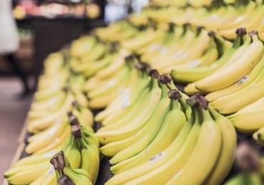 Kokaina w kartonach z bananami. Narkotyki znaleziono w kolejnych miejscach