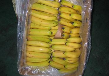 """Narkotyki w kartonach z bananami. """"Pytań, które się rodzą, jest cała masa"""""""