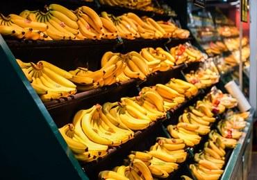 Kokaina w kartonach z bananami w Sosnowcu