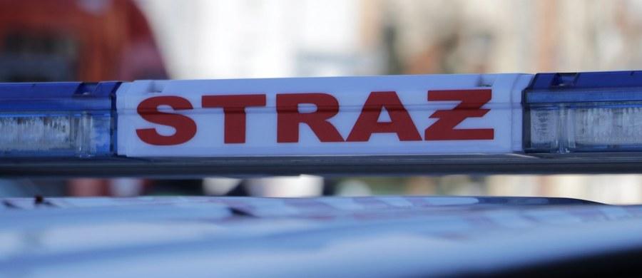 Ciała trzech osób znaleziono w sobotę rano po pożarze pustostanu w Giżycku na Mazurach. Ze wstępnych ustaleń policji wynika, że byli to prawdopodobnie bezdomni, a przyczyną śmierci mogło być zatrucie dymami pożarowymi.