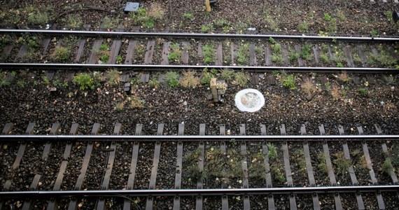 41-letniego mężczyznę, który próbował doprowadzić do katastrofy kolejowej, zatrzymali policjanci z Andrychowa (Małopolskie) - podał rzecznik małopolskiej policji Sebastian Gleń. Okazało się, że lista przestępstw zatrzymanego 41-latka jest dłuższa. Grozi mu 8 lat więzienia.