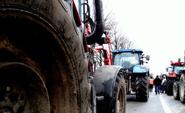 Po kilku godzinach zakończył się protest rolników w Przygłowie w Łódzkiem, który powodował duże utrudnienia w ruchu na drodze krajowej nr 12 na odcinku między Piotrkowem Trybunalskim a Sulejowem. Rolnicy protestowali przeciwko niekorzystnej sytuacji na rynku trzody chlewnej.