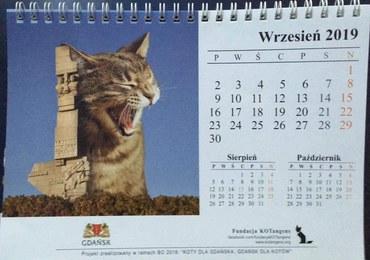 Kontrowersyjna kartka z kalendarza. Pomnik na Westerplatte i... kot