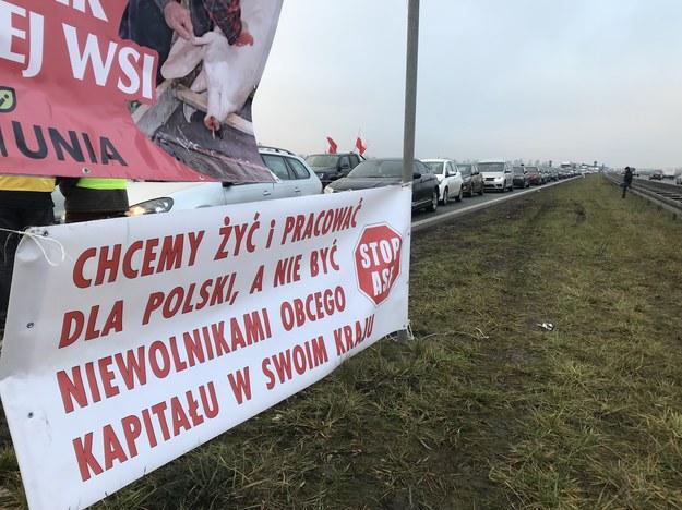 /Michał Dobrołowicz /RMF FM