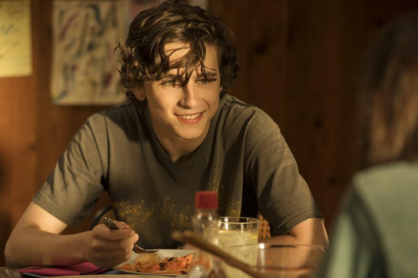 """Timothée Chalamet znowu jest na ustach wszystkich. Jego rola w filmie """"Mój piękny syn"""", gdzie u boku Steve'a Carella gra dorastającego nastolatka, którego rodzina próbuje uchronić przed uzależnieniem, już przyniosła mu nominację do Złotego Globu, Critics' Choice Award oraz Screen Actors Guild Award."""