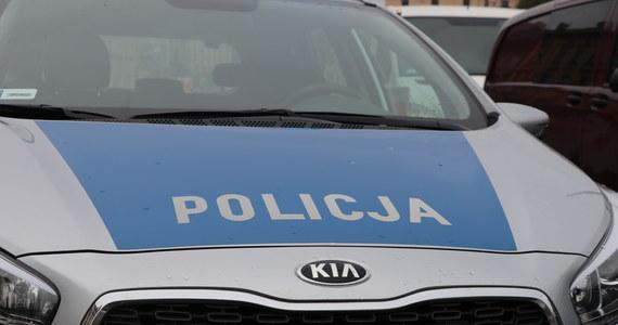 Zabójstwo czterech noworodków w Ciecierzynie pod Byczyną na Opolszczyźnie - dowiedzieli się nieoficjalnie reporterzy RMF FM. Do tego makabrycznego odkrycia doszło na terenie jednej z posesji.