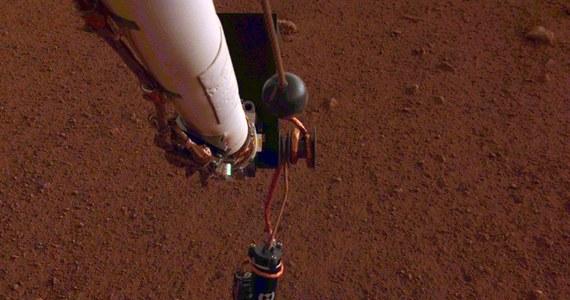 Osłuchiwanie Czerwonej Planety czas zacząć. NASA poinformowała, że sonda InSight postawiła na powierzchni Marsa sejsmometr. Z jego pomocą będzie rejestrować wszelkie wstrząsy, których analiza pomoże w badaniach wnętrza planety. Istotny etap misji najnowszego marsjańskiego próbnika przebiegł bez zakłóceń. Za mniej więcej miesiąc do sejsmometru ma dołączyć na marsjańskim gruncie sonda termiczna, wyposażona w urządzenie wbijające polskiego Kreta. Wcześniej jednak sejsmometr ma prowadzić pomiary w ciszy i spokoju.