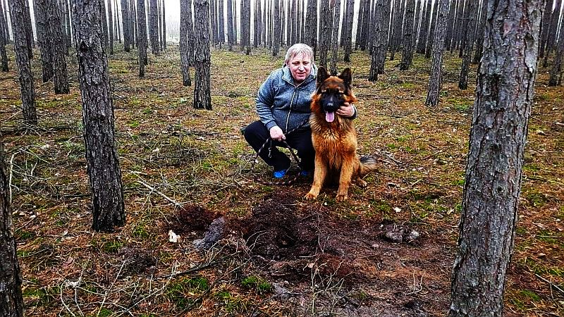 /foto – Biuro Ochrony Zwierząt Zielona Góra /