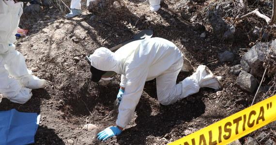 Do 94 wzrosła liczba ofiar śmiertelnych piątkowego wybuchu rurociągu z paliwem w stanie Hidalgo w środkowym Meksyku - poinformowały we wtorek meksykańskie władze. Poprzedni bilans mówił o 85 zabitych.