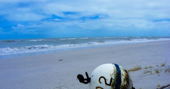 Statek organizacji ekologicznej Sea Shepherd został obrzucony w Zatoce Meksykańskiej kamieniami i podpalony przez miejscowych rybaków - taką informację przekazała sama organizacja. Ekolodzy walczą w Zatoce z nielegalnymi połowami. Nie po raz pierwszy zostali tam zaatakowani.