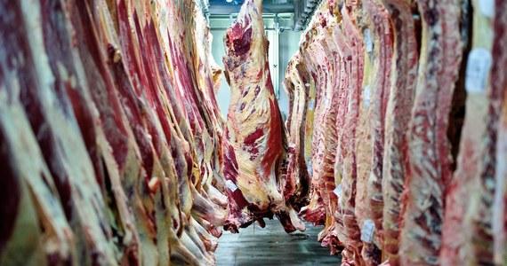 Arabia Saudyjska i Białoruś wprowadzają czasowy zakaz importu mięsa wołowego i produktów z mięsa wołowego z Polski. Główny Inspektorat Weterynarii prowadzi prace nad zniesieniem tych ograniczeń. Z kolei Białoruś poza mięsem wołowym zakazała także importu bydła z naszego kraju.