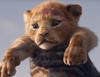 Zobacz trailer: Król Lew