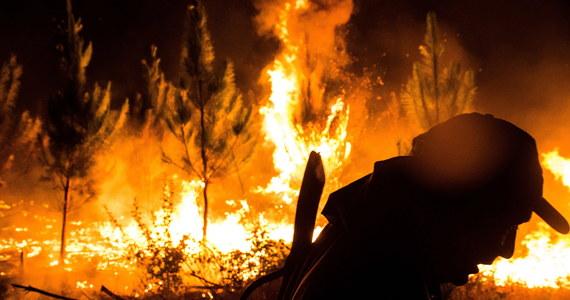 W środkowym i południowym Chile strażacy walczą z 40 pożarami lasów, podczas gdy gaszenie 48 pożarów dobiega końca, a 27 już ugaszono. W wyniku pożarów trzy osoby poniosły śmierć, a 74 są poszkodowane.