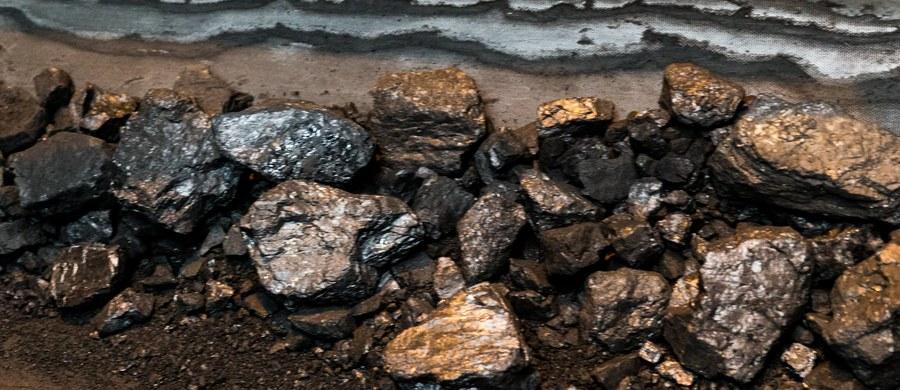 Prokuratura w Jastrzębiu-Zdroju prowadzi śledztwo w sprawie styczniowego wypadku w kopalni Rydułtowy. W wyniku tąpnięcia zginął 44-letni górnik, a ośmiu innych pracowników zostało rannych.