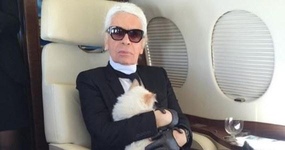 """Kotka Choupette może odziedziczyć spadek po Karlu Lagerfeldzie. Niebagatelny - bo liczący około 200 milionów dolarów. """"Nie bójcie się. Jest tego tyle, że starczy dla każdego""""- miał mówić światowej sławy kreator mody. Lagerfeld był tak zakochany w swojej pupilce, że - jak mówiono - byłby gotowy ją nawet poślubić."""