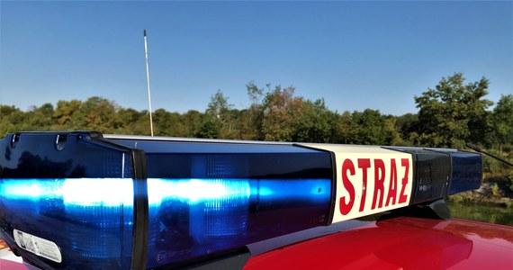 Wędkarz odkrył zwłoki młodego mężczyzny w rzece Prosna w kaliskim Parku Miejskim. Na miejscu pracują policja, prokurator oraz strażacy.