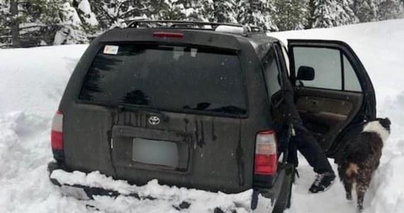 Mieszkający w Sunriver w Oregonie w USA mężczyzna zabrał psa, wsiadł do swojego auta i pojechał na stację benzynową. W drodze powrotnej jego auto wpadło w poślizg i wylądowało na poboczu w gigantycznej zaspie. Uwięziony przez śnieg mężczyzna został odnaleziony dopiero po 5 dniach.