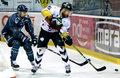 PHL. GKS Tychy - MH Automatyka Gdańsk 2-0. Mistrz Polski wygrał serię 4-3